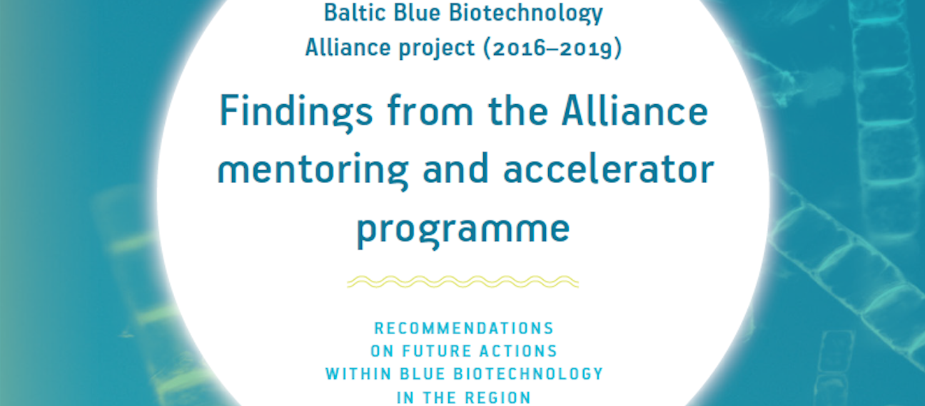 Findings from the Alliance mentoring and accelerator programme – full report