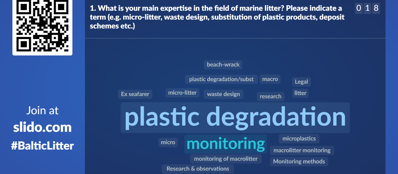 The SUBMARINER Marine Litter Working Group takes its first steps