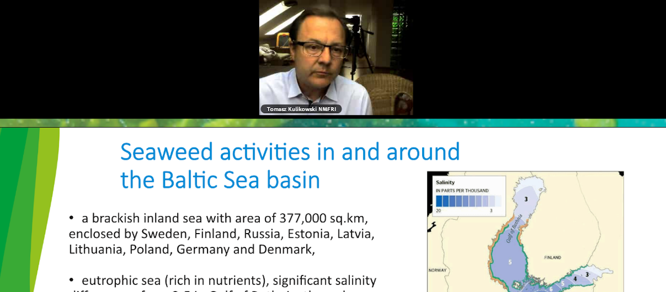 The GRASS project participated in the EU Seaweed Strategy webinar